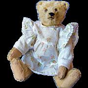 Vintage STEIFF Teddy bear 1925 - 1930