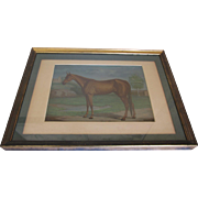 "Framed Vintage Horse Print ""Maud S.""-Signed/Copyright 1881"