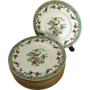 Vintage Peacock Plates by Mintons- Set of 11