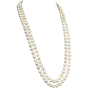 Elegant Double Strand of Fine Akoya Pearls 22-24in with Ruby and 14k Gold Clasp, Circa 1958