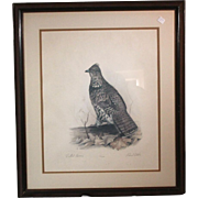 "50% OFF SALE: Robert White ""Ruffled Grouse"" 1977 lithograph 431/1500 w/ COA (ART10046)"
