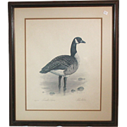 "50% OFF SALE: Robert White ""Canadian Goose"" 1977 lithograph 247/1500 (ART10047)"
