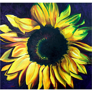 Sunflower, Original Oil Painting – Karen Chandler