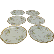 Beautiful Set of 6 Dinner Plates made by Haviland & Co of Limoges France.