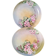 "Beautiful Pair of Two 1920s Haviland Limoges 7.5"" Floral Porcelain Plates"