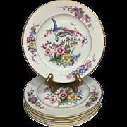 "Gilt Edged Rosenthal ""Phoenix"" Cream Pattern Set of 6 Salad Dessert Plates 7.75"" B. Altman Co New York"