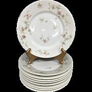 "Beautiful Set of 9 Theodore Haviland Limoges France Dinner Plates - 1903 Mark - 9 5/8"""
