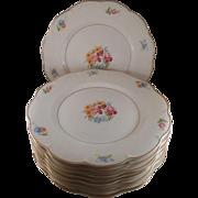 Gorgeous Set of 12 Fine Theodore Haviland Breton New York Set of Porcelain Dinner Plates