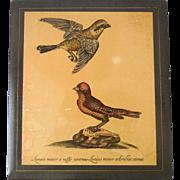 Vintage Gilt Florentine Wooden Keepsake Box