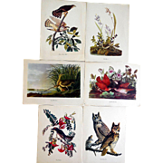 Collection of 6 Audubon Prints, Presented by Roger Tory Peterson, Ca 1950s