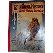 A Natural History, Birds, Fishes, Insects, Etc, Rev Theodore Wood, Ca 1890