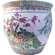 Antique Chinese Qing porcelain planter Plant pot in Famille verte painted with Peacock