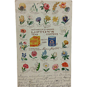 1908 Lipton Teas & Coffees Advertising Card