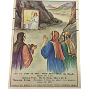Bible Lesson Cards David Cook Publishing