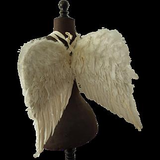 Wonderful vintage feather angel wings from Belgium ca. 1920