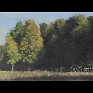 JOHN FOLCHI, New York Artist, Hudson Valley Landscape with Trees, oil