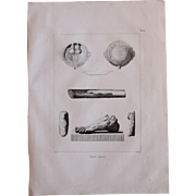 """1802 Original Copper Engraving """"Ancient Egyptian Relicts"""" from Napoleons Travels to Egypt (Vivant Denon) Page 100"""