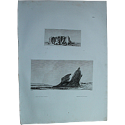 "Antique Print of an ancient Egyptian Temple near Esna and the two mountains- Original Copper Engraving from ""Napoleons Travels to Egypt"" (Vivant Denon) 1802"