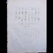 "1802 Original Copper Engraving ""Hieroglyphs & Engravings"" from Napoleons Travels to Egypt (Vivant Denon) Page 115"