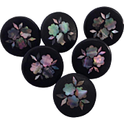 Rare Set Of Six Antique French Papier-Mâché Lacquered Buttons/Mother Of Pearl/Abalone. 1800's