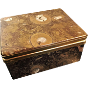 Excellent French Fossil Stone Jewelry Casket.
