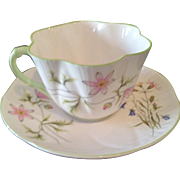 "Shelley ""wild Anemone"" cup & saucer"