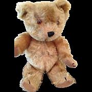 "Vintage 11"" squeaky teddy"