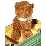 Miniature Brown Mohair Bear with a Pointed Nose