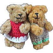 Cute Miniature Bear Couple Wearing Crocheted Outfits