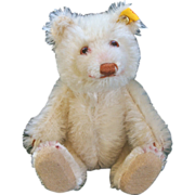 "Little 6"" Steiff Cream Colored Bear"