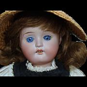 Little Schoenau & Hoffmeister Bisque Head Doll