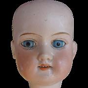 Armand Marseille Floradora Bisque Head Only