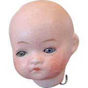Little Herm Steiner Infant Head Only