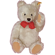 White Steiff Fully Jointed Teddy Bear