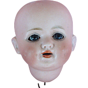 Small Herm Steiner Doll Head
