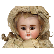 Nice Small Size Bisque Shoulder Head Doll