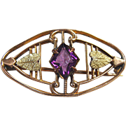 Miniature Brooch by Sturtevant &Whiting Co. for Your Dolly