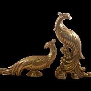 Vintage Syroco Gilt Peacock Pair