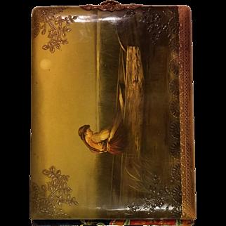 Antique Victorian Embossed Celluloid Photo Album