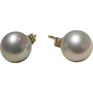 Akoya Cultured Pearl Earrings 14K Y- Gold Simple Studs 7.5 MM Rarest Gray - Vintage