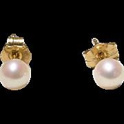 Akoya Cultured Pearl Earrings 14K Y- Gold Simple Studs 4 MM Finest - Vintage