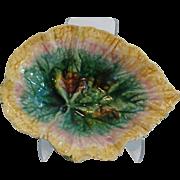 Etruscan Begonia Leaf Majolica Plate