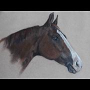 Equestrian Race Horse Portrait Painting
