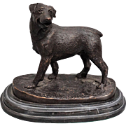 Antique Bronze Rottweiler Dog Sculpture on Marble Plinth