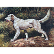 Antique Continental Setter Dog in Meadow Landscape