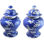 Pair of Antique Chinese Kangxi 19th Century Lidded Pots