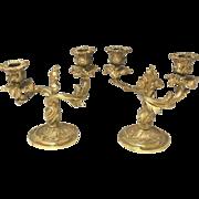 Antique Acanthus Floral Floral Gold Gilded Bronze Candelabras Pair