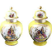 Pair of Stunning Meissen-Style Hand-Painted Yellow Mantel Vases