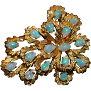 Opal Brooch set in 18K Yellow Gold