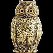 Magnificent Antique 19th Century Owl Vesta with Original Glass Eyes